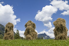 Traditional alpine hay dry Royalty Free Stock Photos