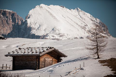 Traditional alpine log or timber cabin Stock Image
