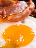 Traditional american bacon and egg breakfast Stock Photography