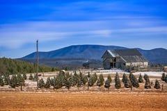 Traditional American Barn Stock Photos