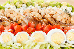Traditional American Cobb Salad Royalty Free Stock Image