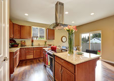 Traditional American kitchen featuring stainless steel appliances. Royalty Free Stock Photos