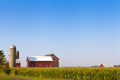 Traditional American Red Farm Royalty Free Stock Photography