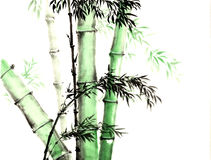 The traditional ancient Chinese hand painted bamboo royalty free stock image
