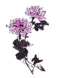 The traditional ancient Chinese hand painted chrysanthemum Stock Photos
