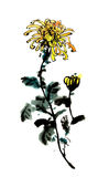 The traditional ancient Chinese hand painted chrysanthemum Stock Image
