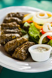 Traditional appetizer dolma Royalty Free Stock Photos