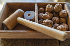 Traditional appetizer walnuts with wooden hammer to crack, itali Stock Images