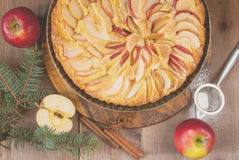 Traditional apple pie and Christmas tree branches, toned Stock Photography