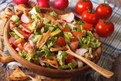 Traditional Arabic fattoush salad close-up on a plate. horizonta Royalty Free Stock Photography