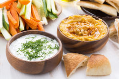 Traditional Arabic sauce - hummus and yogurt with herbs Stock Images