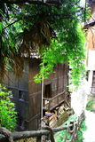 The traditional architecture in bamboo grove. Royalty Free Stock Photos