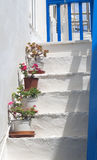Traditional architecture of Oia village in Santorini island Royalty Free Stock Photo