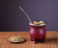 Traditional Argentinian mate. Stock Image