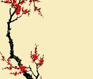 Traditional Artistic plum blossom Pattern Royalty Free Stock Image