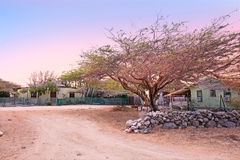 Traditional arubean houses in the cunucu on Aruba island Stock Photography
