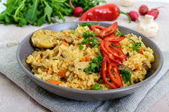 A traditional Asian dish - pilaf with meat, mushrooms and pepper capi in a bowl Stock Images