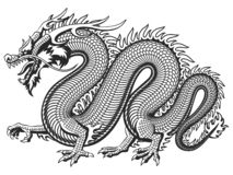 Traditional Asian Dragon vector illustration
