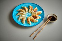 Traditional asian dumplings Gyozas on turqoise ceramic plate royalty free stock photo