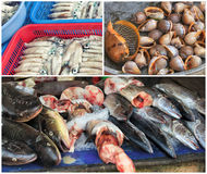 Traditional asian fish market collage Royalty Free Stock Photo