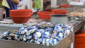 Traditional asian market. Stall full of fresh blue crabs Stock Photo