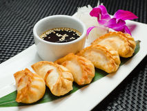 Traditional asian pan fried gyoza dumplings Stock Image