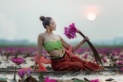 Traditional asian woman harvest red lotus flower in nature river, stock image