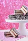 Traditional Australian Lamington Cakes Royalty Free Stock Photos