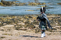 Traditional bagpiper in full dress code near Pennan Royalty Free Stock Images