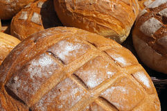 Traditional baked bread. Stock Images