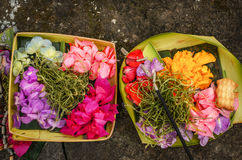 Traditional balinese offerings Royalty Free Stock Images
