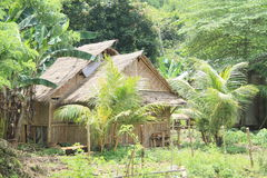 Traditional bamboo house Stock Photo