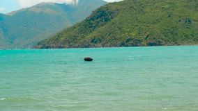 Traditional basket fishing boat floating in sea. Round boat for fishing in sea. Waves on turquoise water and beautiful. Mountain landscape stock video
