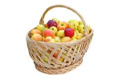 Traditional basket full of apples Royalty Free Stock Photography