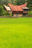 Traditional Batak house on Samosir island, Sumatra, Indonesia Stock Photo