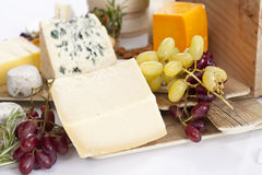 Traditional Belgian cheese Stock Photography