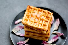 Traditional Belgian waffles with tulip petals and honey on concrete background. stock photo