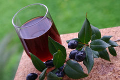 Traditional berry's Liqueur of Sardinia Royalty Free Stock Images