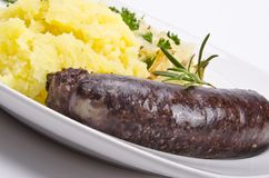 Traditional blood sausage Royalty Free Stock Images