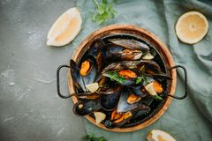 Traditional blue mussel in white wine on stone royalty free stock images