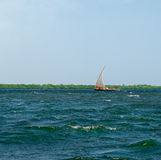 Traditional  Boat sails in, Kenya Royalty Free Stock Image