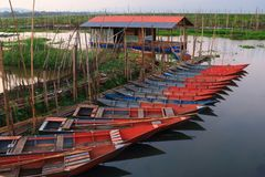 Traditional boats in Rawa Pening Lake. Rawa Pening Swamp, beautiful place with traditional some boats and fisher. Rawa Pening is located in the volcanic Ambarawa stock image
