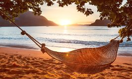 Traditional hammock in the shade at sunset on a calm tropical beach. Traditional braided hammock in the shade with tropical island on background Royalty Free Stock Photos