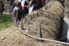 Traditional braiding twigs fence Royalty Free Stock Photo