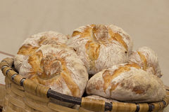 Traditional breads in a basket Stock Image