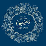 Traditional brewery. Light lager. Hand drawing Stock Images
