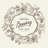 Traditional brewery. Light lager. Hand drawing Royalty Free Stock Image