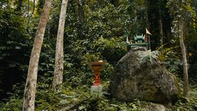 Traditional Buddhist altar in the jungles of Thailand stock footage