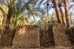 Traditional building of clay, thatched walls and adobe bricks, gardens of date palms. Bahariya, Western Desert, Sahara, Egypt. royalty free stock photo