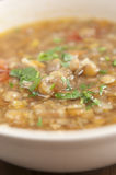 Traditional Bulgarian Lentil Soup Stock Image